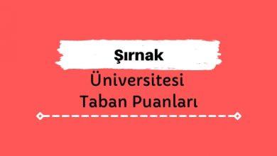 Şırnak Üniversitesi Taban Puanları ve Başarı Sıralamaları