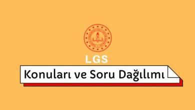 2022 LGS Konuları, LGS Soru Dağılımı