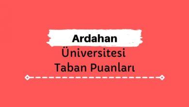Ardahan Üniversitesi Taban Puanları ve Sıralamaları, ARÜ Taban Puanları ve Başarı Sıralaması