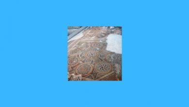 Arkeoloji ve Sanat Tarihi Taban Puanları, Arkeoloji ve Sanat Tarihi Başarı Sıralaması, Arkeoloji ve Sanat Tarihi Bölümü