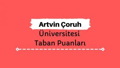 Artvin Çoruh Üniversitesi Taban Puanları ve Sıralamaları, AÇÜ Taban Puanları ve Başarı Sıralaması
