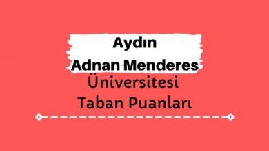 Aydın Adnan Menderes Üniversitesi Taban Puanları ve Sıralamaları, ADÜ Taban Puanları ve Başarı Sıralaması