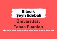 Bilecik Şeyh Edebali Üniversitesi Taban Puanları ve Sıralamaları, BŞEÜ Taban Puanları ve Başarı Sıralaması