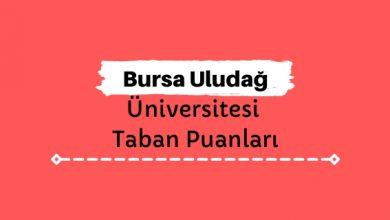 Bursa Uludağ Üniversitesi Taban Puanları ve Sıralamaları, UÜ Taban Puanları ve Başarı Sıralaması