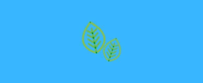 Çevre Mühendisliği Taban Puanları, Çevre Mühendisliği Başarı Sıralaması, Çevre Mühendisliği Bölümü