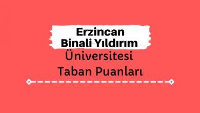 Erzincan Binali Yıldırım Üniversitesi Taban Puanları ve Sıralamaları, EBYÜ Taban Puanları ve Başarı Sıralaması