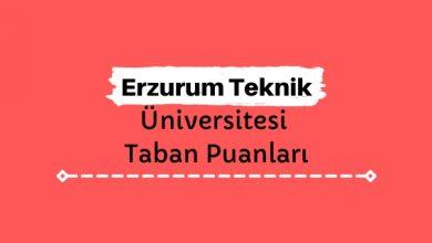 Erzurum Teknik Üniversitesi Taban Puanları ve Sıralamaları, ETÜ Taban Puanları ve Başarı Sıralaması