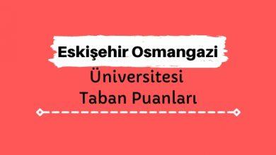 Eskişehir Osmangazi Üniversitesi Taban Puanları ve Sıralamaları, ESOGÜ Taban Puanları ve Başarı Sıralaması
