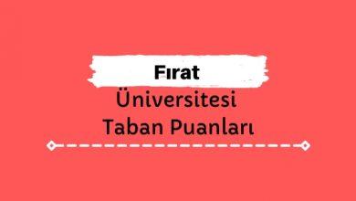 Fırat Üniversitesi Taban Puanları ve Sıralamaları, FÜ Taban Puanları ve Başarı Sıralaması
