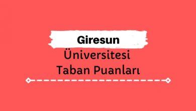 Giresun Üniversitesi Taban Puanları ve Sıralamaları, GRÜ Taban Puanları ve Başarı Sıralaması