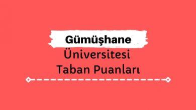 Gümüşhane Üniversitesi Taban Puanları ve Sıralamaları, GÜ Taban Puanları ve Başarı Sıralaması