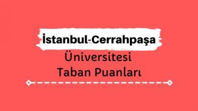 İstanbul Üniversitesi-Cerrahpaşa Taban Puanları ve Sıralamaları, İÜC Taban Puanları ve Başarı Sıralaması