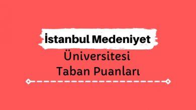 İstanbul Medeniyet Üniversitesi Taban Puanları ve Sıralamaları, İMÜ Taban Puanları ve Başarı Sıralaması