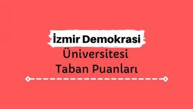İzmir Demokrasi Üniversitesi Taban Puanları ve Sıralamaları, İDÜ Taban Puanları ve Başarı Sıralaması