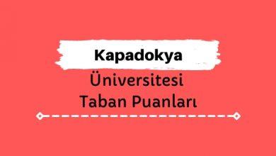 Kapadokya Üniversitesi Taban Puanları ve Sıralamaları