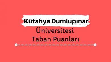 Kütahya Dumlupınar Üniversitesi Taban Puanları ve Sıralamaları, DPÜ Taban Puanları ve Başarı Sıralaması