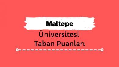 Maltepe Üniversitesi Taban Puanları ve Sıralamaları - mü