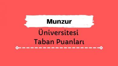 Munzur Üniversitesi Taban Puanları ve Sıralamaları