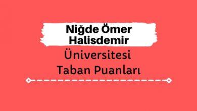 Niğde Ömer Halisdemir Üniversitesi Taban Puanları ve Sıralamaları, ÖHÜ Taban Puanları ve Başarı Sıralaması
