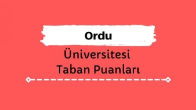 Ordu Üniversitesi Taban Puanları ve Sıralamaları, ODÜ Taban Puanları ve Başarı Sıralaması