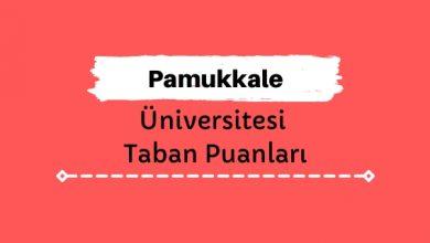 Pamukkale Üniversitesi Taban Puanları ve Sıralamaları, PAÜ Taban Puanları ve Başarı Sıralaması