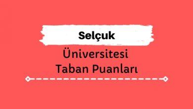 Selçuk Üniversitesi Taban Puanları ve Sıralamaları, SÜ Taban Puanları ve Başarı Sıralaması