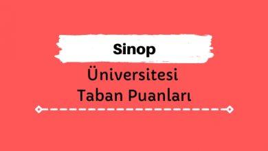 Sinop Üniversitesi Taban Puanları ve Sıralamaları, SNÜ Taban Puanları ve Başarı Sıralaması