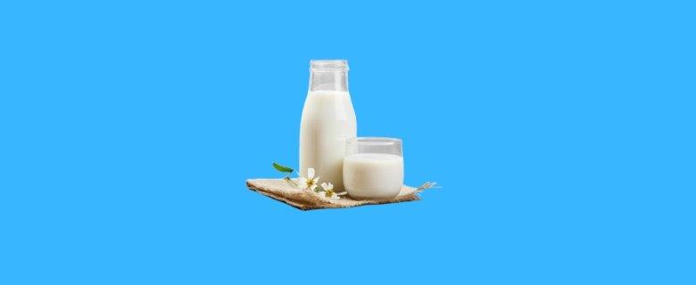 Süt Teknolojisi Taban Puanları, Süt Teknolojisi Başarı Sıralaması, Süt Teknolojisi Bölümü