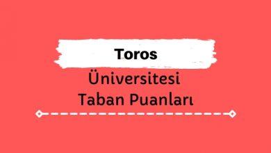 Toros Üniversitesi Taban Puanları ve Sıralamaları