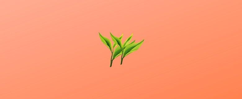 Çay Tarımı Ve İşleme Teknolojisi Taban Puanları, Çay Tarımı Ve İşleme Teknolojisi Başarı Sıralaması, Çay Tarımı Ve İşleme Teknolojisi Önlisans Puanları